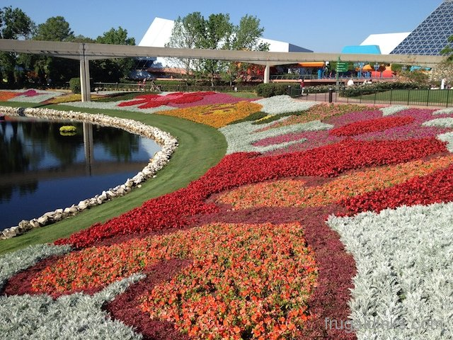 epcot-flower-and-garden-2012-15