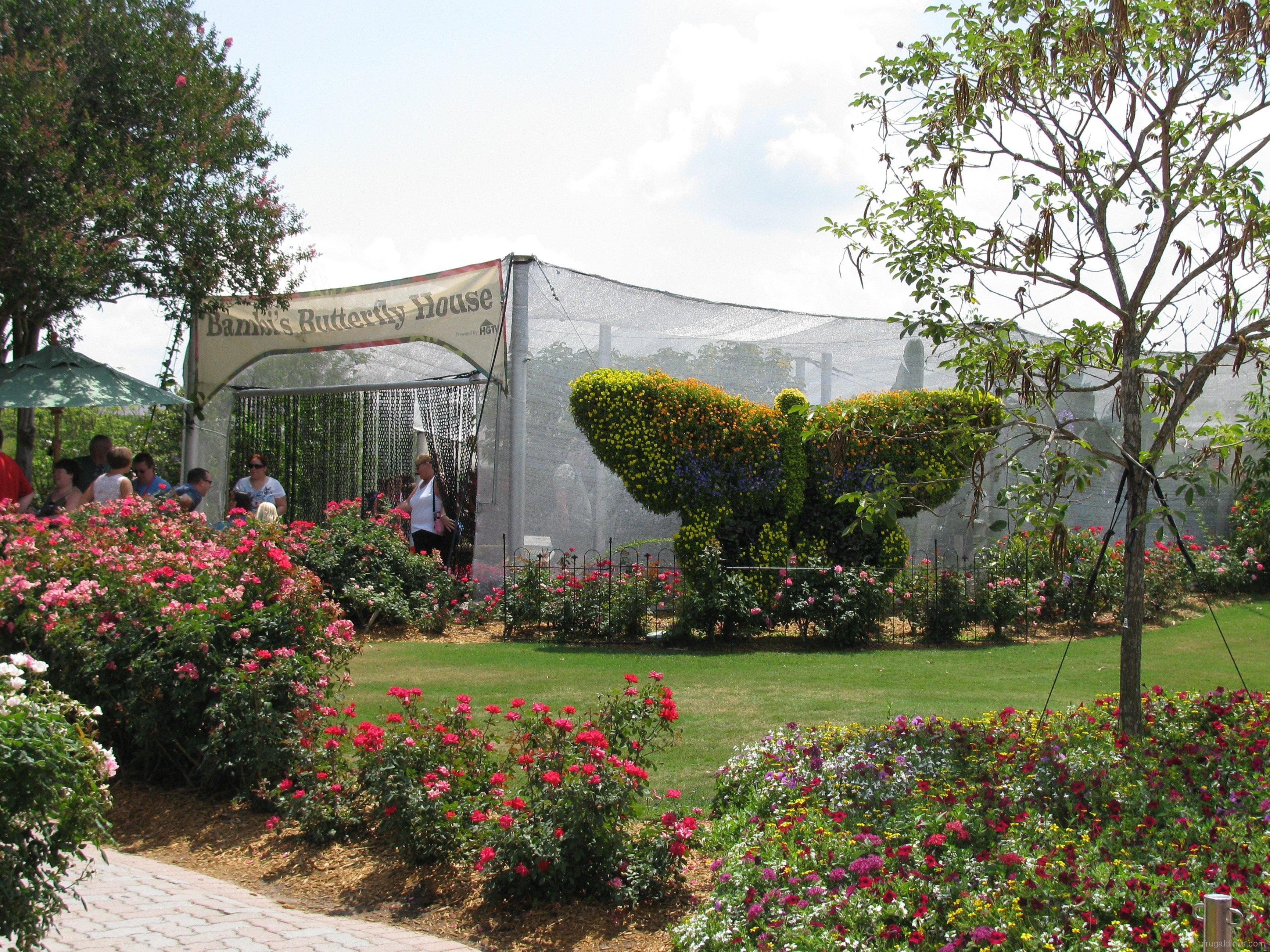 butterfly house « extra walt disney world magic