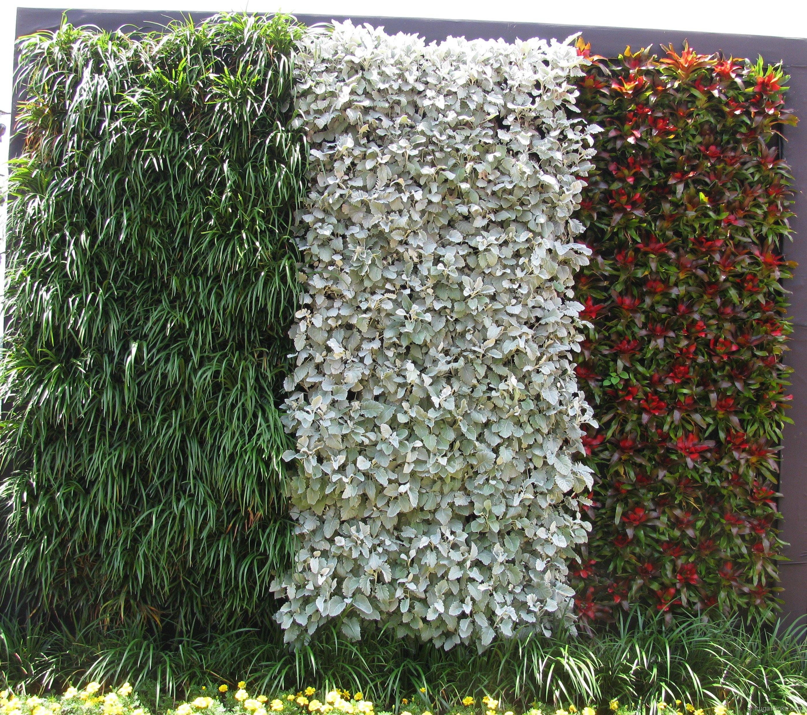 2011-epcot-flower-garden-festival-33