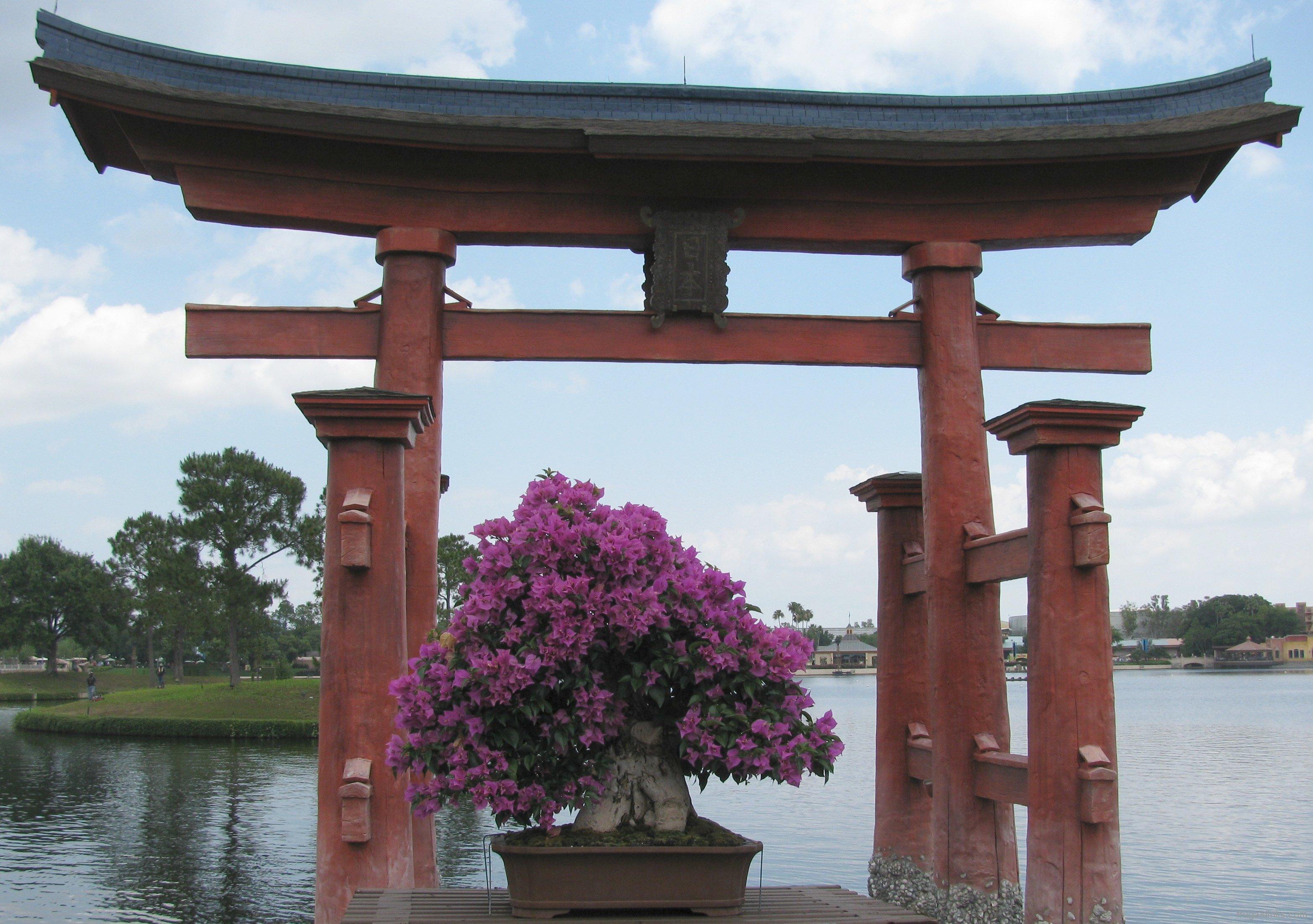 2011-epcot-flower-garden-festival-62
