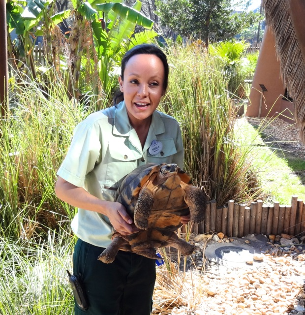 Yaraila holds the tortoise for us to see his underbelly