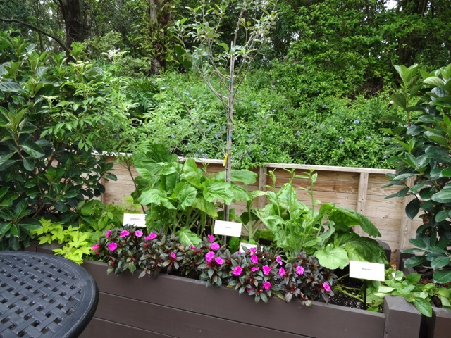 The featured plantings