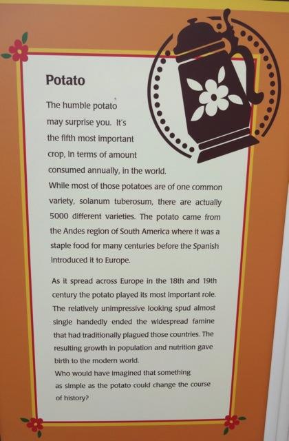 """""""The Potato"""""""