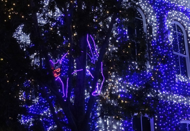 The Osborne Family Spectacle of Dancing Lights November 12 2013 - 15