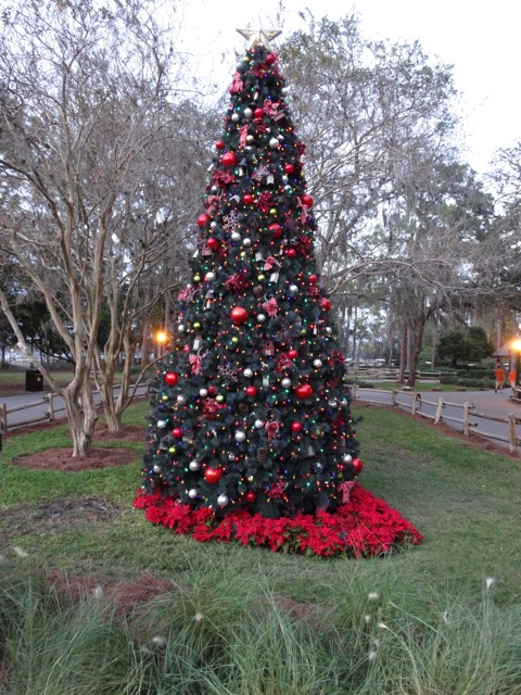 Fort Wilderness Christmas 2013 - 01