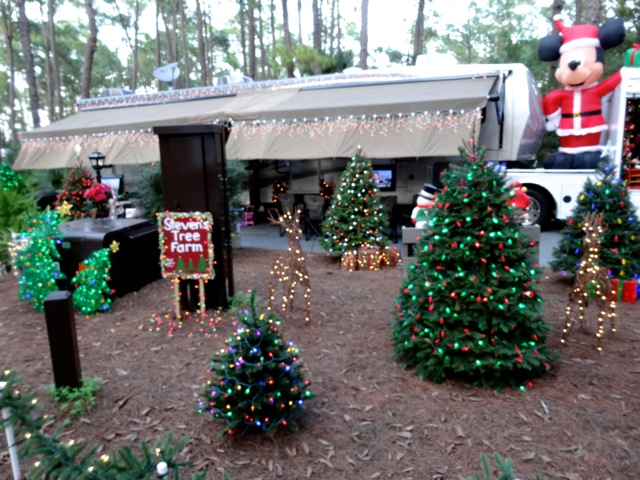 Fort Wilderness Christmas 2013 - 17