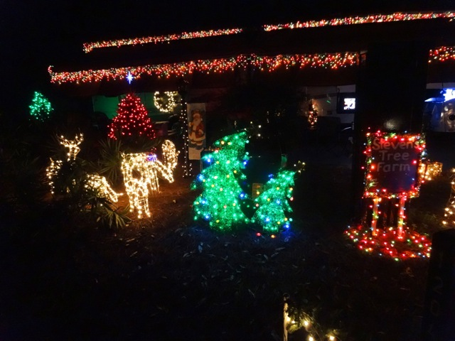 Fort Wilderness Christmas 2013 - 19