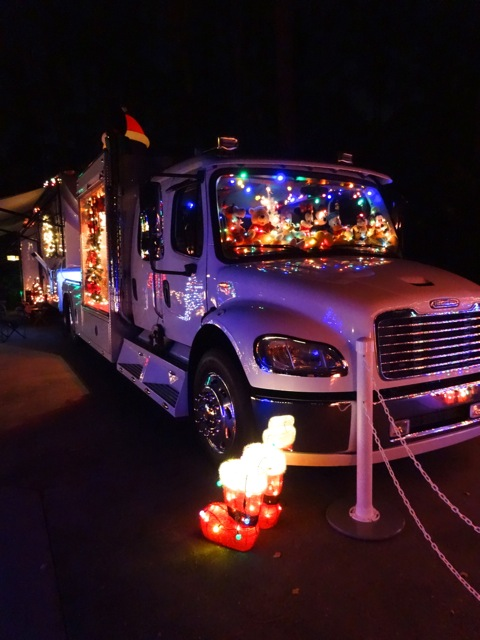 Fort Wilderness Christmas 2013 - 24