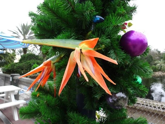 Old Key West Holiday Decor 2013 - 6